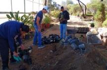 Prepa Sanmiguelense Servicio Social Reforestación 3