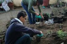 Prepa Sanmiguelense Servicio Social Reforestación